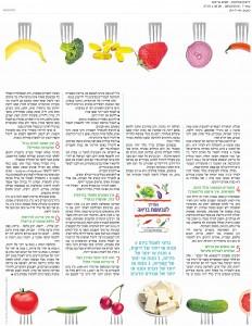 פוקוס ידיעות אחרונות פברואר 2015-page-002 (1)
