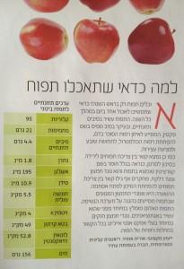 מנטה תפוח (2)